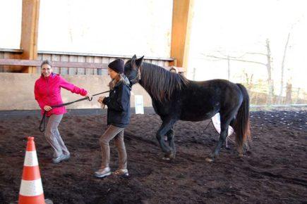 Coaching assisté par le cheval