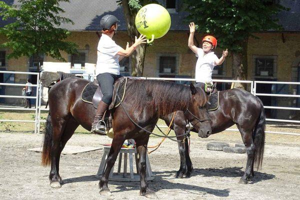 Cours Duo en équitation éthologique avec la Relation de Complicité®