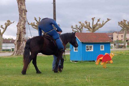 Débourrage d'un cheval en utilisant le mannequin