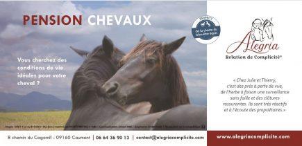 Plaquette pension chevaux