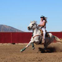 Un cheval qui a peur et embarque son cavalier