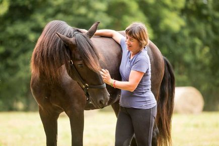 Avoir une bonne relation avec son cheval