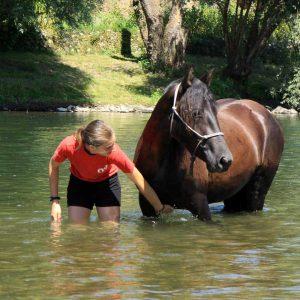 Une propriétaire avec son cheval mérens dans la rivière